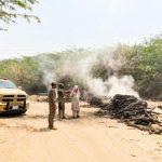 ضبط 5 مخالفين لنظام البيئة لقطعهم #الأشجار وتحويلها إلى فحم في #جدة
